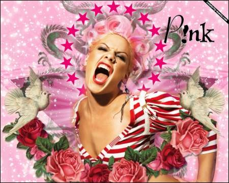PINK THE ARTIST